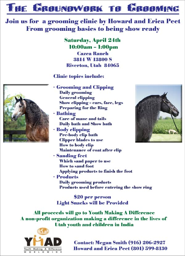 horse grooming clinic