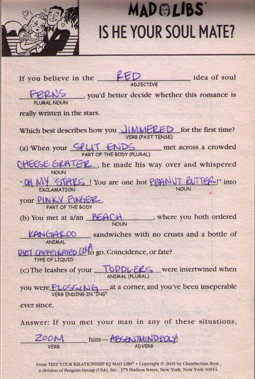 Mad Libs Lindsey Redfern