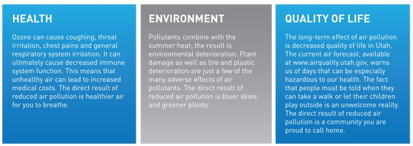 effects of air pollution graphic