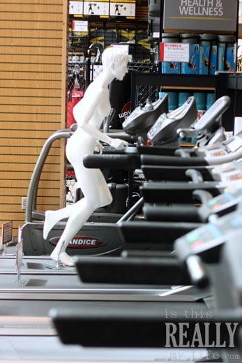Scheels Utah sporting goods treadmill