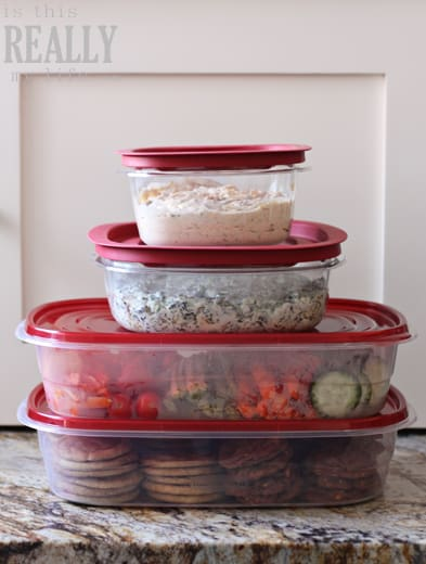 Rubbermaid TakeAlongs & Premier containers
