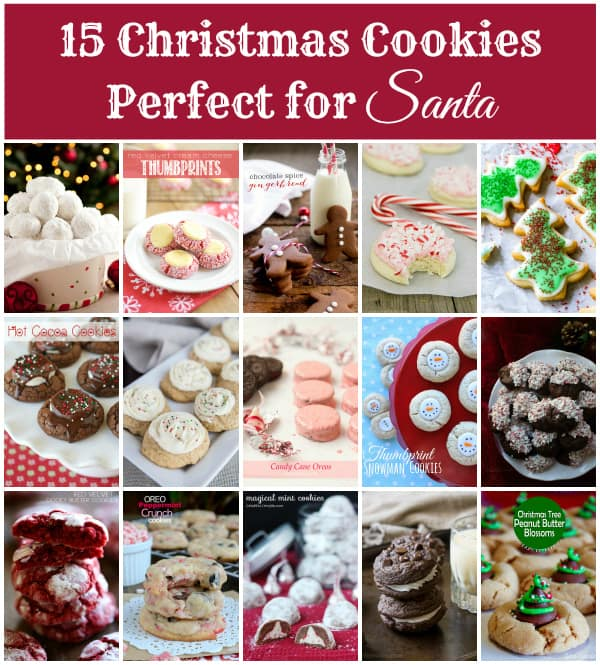 Christmas Cookies for Santa -- these are sure to ensure your spot on the NICE list!