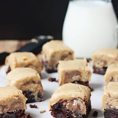 Peanut Butter Fudge Brownies - so decadent and so dang peanut buttery!