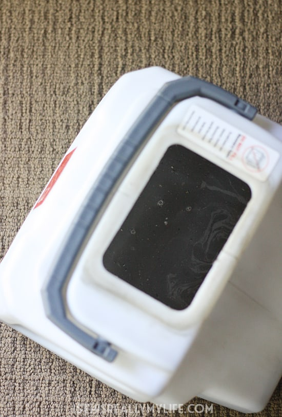 Rug Doctor review -- Renting a Rug Doctor is our favorite way to get our family room clean. It is quick and easy and does a great job. The proof is in the water reclaim tank.