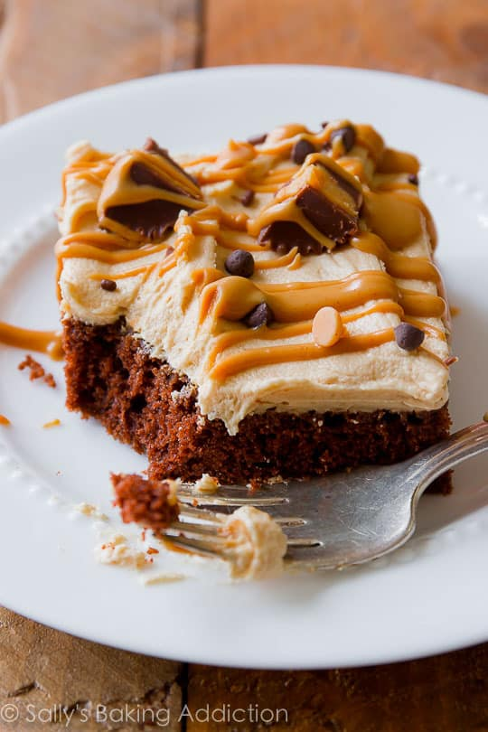 Chocolate sheet cake with creamy peanut butter frosting