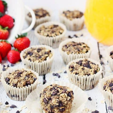 Oatmeal Chocolate Chip Protein Muffins -- Oatmeal chocolate chip protein muffins are so yummy, it's hard to believe they're good for you. Bake them and then freeze them for a healthy meal on the go!   halfscratched.com