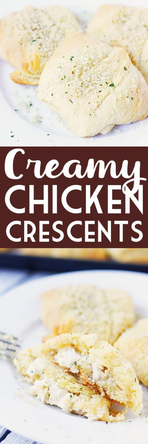 Creamy Chicken Crescent Rolls -- Creamy chicken crescent rolls are a family favorite. Flaky crescent roll dough is filled with a creamy chicken mixture and topped with melted butter and seasoned bread crumbs. Plus you can freeze the leftovers! | halfscratched.com #recipes #easyrecipe #chicken
